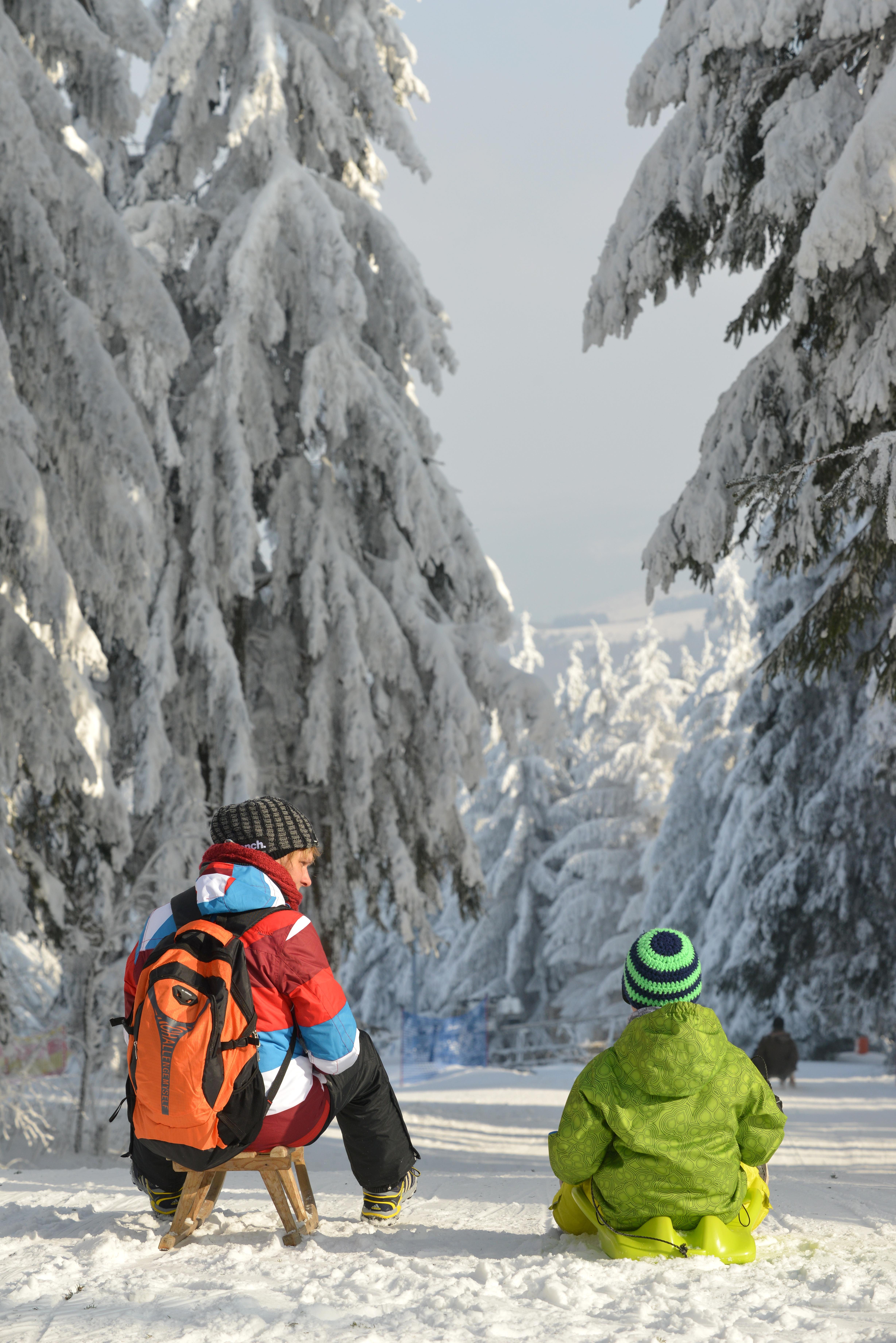 Schlittenfahren und Rodeln   Chiemsee-Alpenland Tourismus